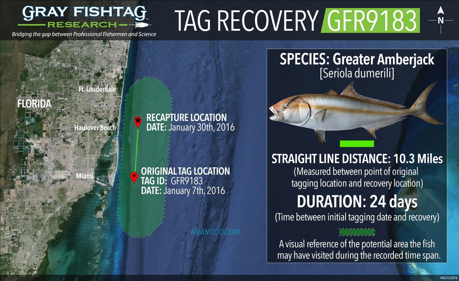 GFR9183-Greater-Amberjack-Recovery