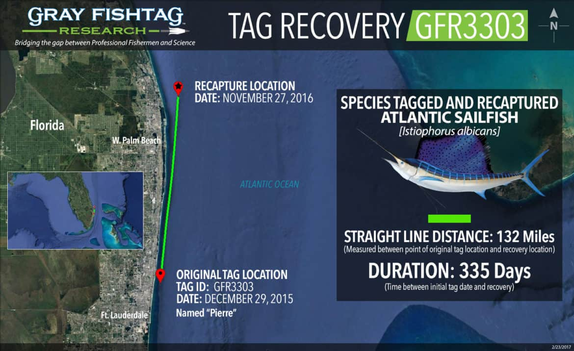 GFR3303-Atl-Sailfish-Recovery
